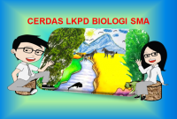 Piramida Ekologi dan Produktivitas